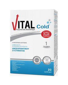 Vital Cold, 20caps