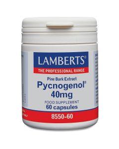 Lamberts Pycnogenol 40mg, 60caps