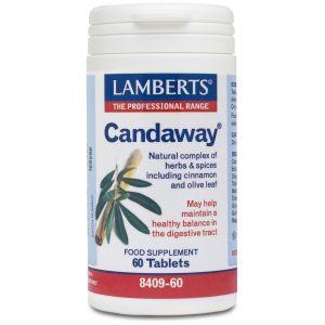 Lamberts Candaway, 60caps