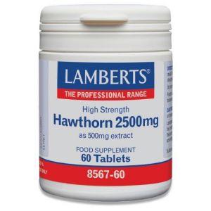 Lamberts Hawthorn 2500mg, 60tabs